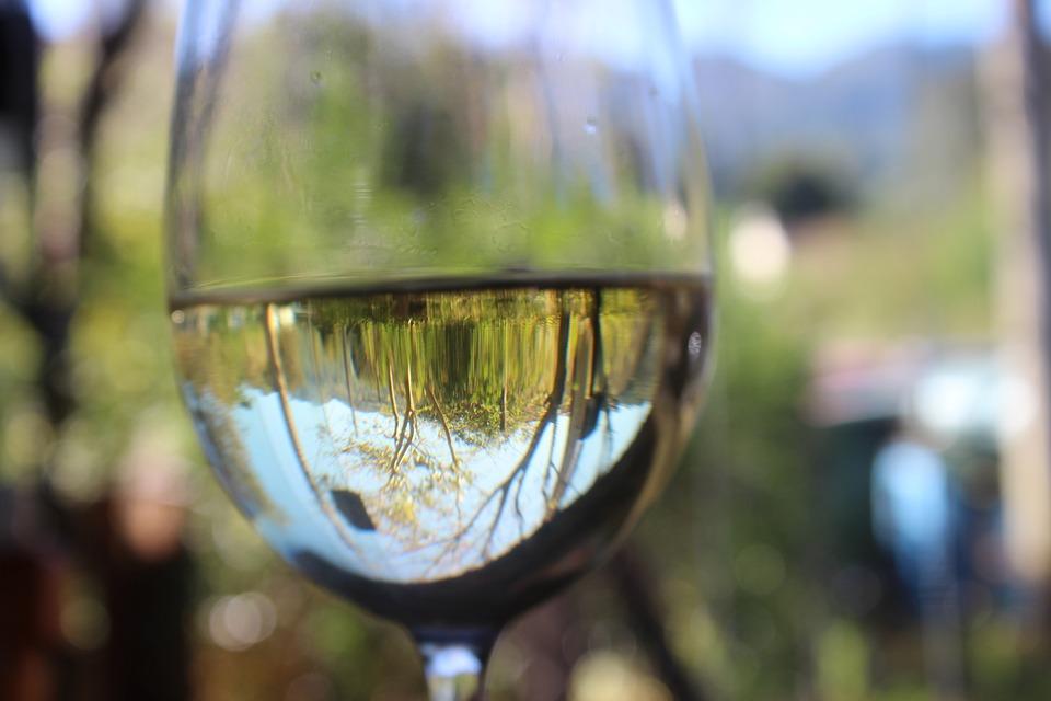 The 10 best Italian white wines