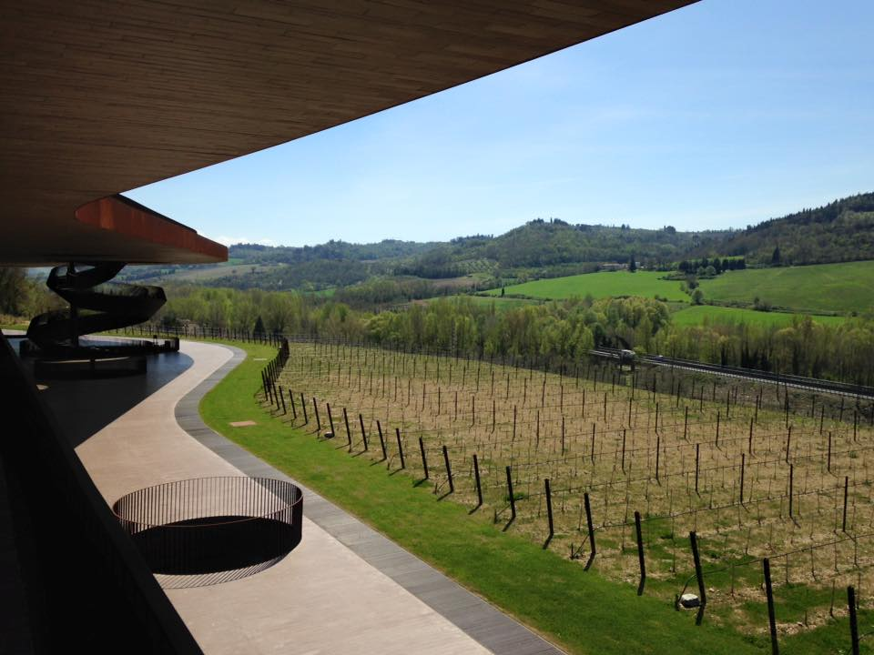 Antinori is the world's most admired Italian wine brand