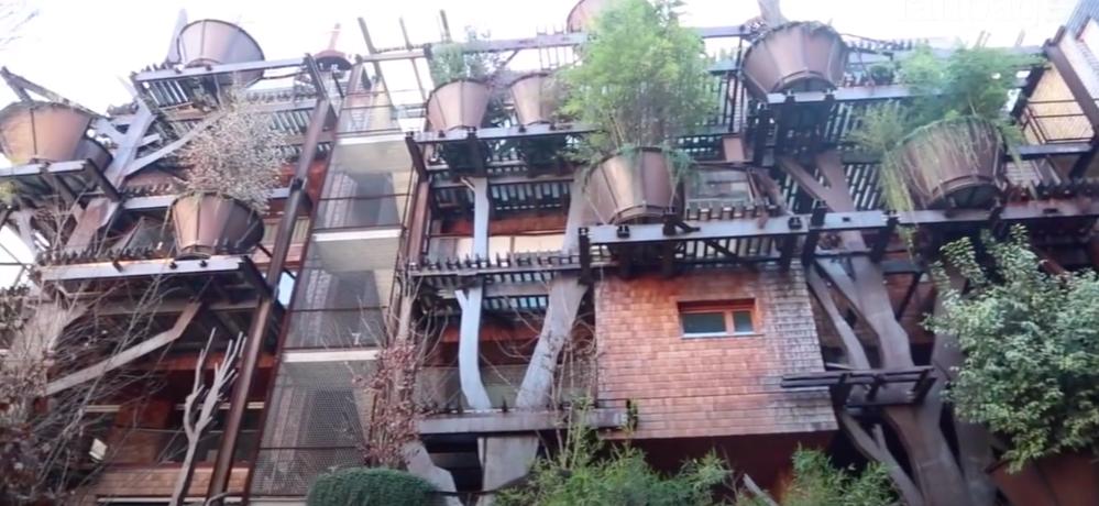 '25 Green,' 63 apartments among trees